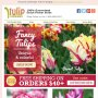Parrot, lily & double tulips | Bulbs as low as $8.95